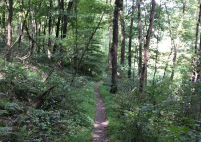 Steel City Outdoor Adventures Hiking Pittsburgh SW Pennsylvania